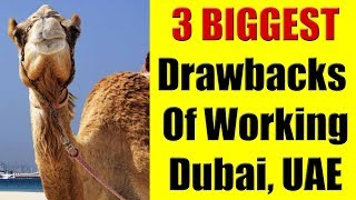 3 Biggest Drawbacks Of Working In Dubai, UAE or The Middle East