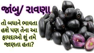 જાંબુના ફાયદા - રાવણાના  ફાયદા - Benefits of Black Plum-Jambu na Fayda-Jamun ke Fayde-Ravna na fayda