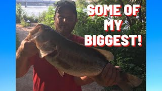 Fishing Ladybird lake, onion creek, lower Colorado river and Slaughter creek! Some of my biggest!