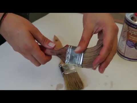 Che trattare un fungo di orecchi a un Labrador