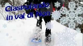 preview picture of video 'Ciaspolata sul Peller'