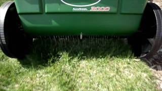 Tips For a Better Yard: Fertilizing and Watering