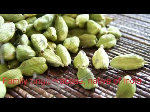 Cardamom use and its magic effects