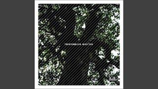 Miss You (Trentemoeller Remix)
