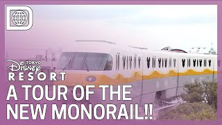 "A Tour of the New ""Type-C"" Monorail - Tokyo Disney Resort"