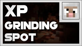 Wynncraft | BEST xp grinding spot (Levels 95-101).