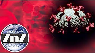ZNZ Nawet łagodny COVID-19 wytwarza przeciwciała, które mogą przetrwać całe życie