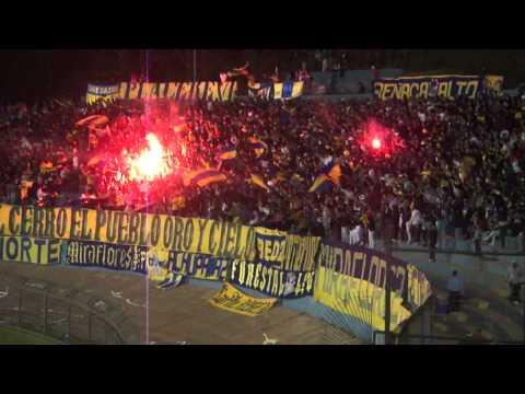 """LOS DEL CERRO / EVERTON La plaza del barrio"" Barra: Los del Cerro • Club: Everton de Viña del Mar • País: Chile"