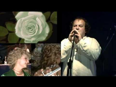 ТIК - Бiлi Троянди