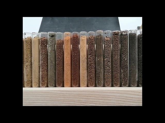 Diversità e variabilità dei suoli: caratteristiche fisiche, struttura e permeabilità. Implicazioni sulla qualità del suolo