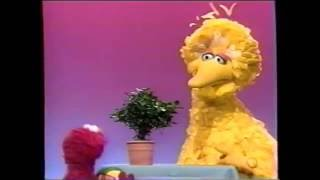 Sesame Street - Elmo Plays with Gloria