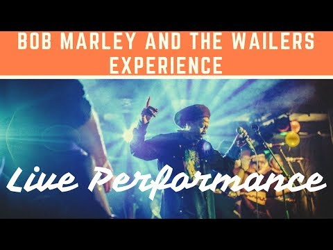 Bob Marley & The Wailers Experience Video