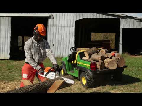 Stihl MS 271 Farm Boss in Mio, Michigan - Video 1