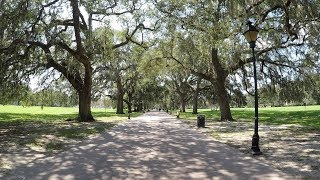 Savannah: Forrest Gump Film Location, Forsyth Park, Haunted Pirate's House, & Bonaventure Cemetery
