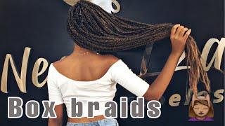 Vlog | Colocando Minhas Box Braids