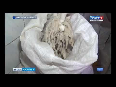 В Республике Калмыкия суд приостановил деятельность убойного пункта на основании выявленных Управлением Россельхознадзора нарушений