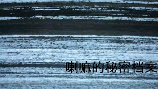 El archivo secreto del lama (experimental)