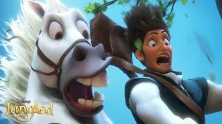Tangled - Maximus And Flynn Funny Moments