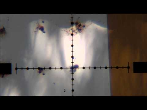 Benjamin Marauder  25 Accuracy Demo with Don Reed of DGS