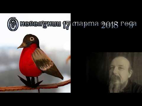 Дарья журнал гороскоп 2017