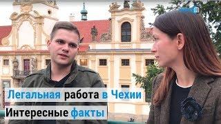 Легальная работа в Чехии. Интересные факты для украинцев и иностранцев