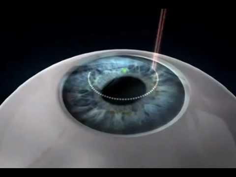 Роль движений глаз в процессе зрения