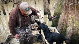 Training a Duck Dog | Mud Buddy Motors