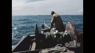 Drift fishing in the 1960s