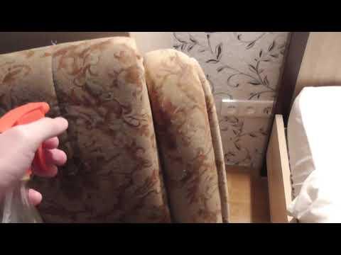 Как удалить запах с дивана и любой мебели