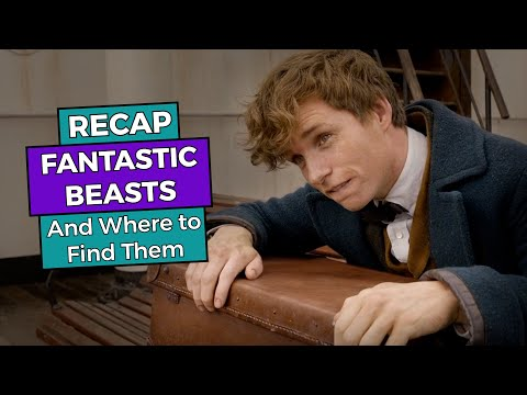 RECAP!!! - Fantastic Beasts and Where to Find Them