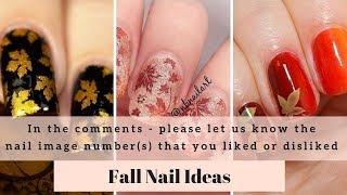 Fall Nails - 200+ Picture Ideas - Fall Season Nail Polish Ideas, Fall Colors Nails Acrylic 2019