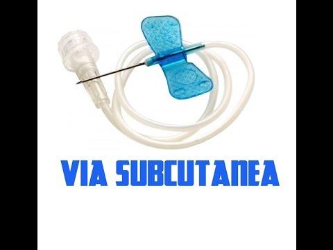 Tratamiento profiláctico con diabetes mellitus insulinodependiente