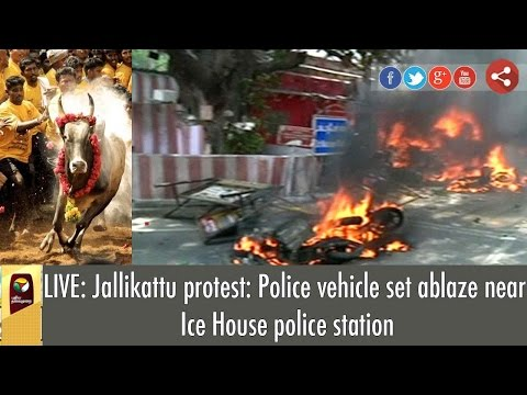LIVE: Jallikattu Protesters set fire to vehicles in front of Police Station at Ice House