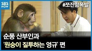 SBS [순풍산부인과] 레전드 시트콤 : '원숭이 질투하는 영규' 편