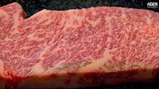Prime Kobe Beef - Steakhouse in Japan