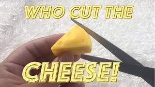 WHO CUT THE CHEESE??