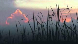 Maurice Ravel / Pavane for a Dead Princess