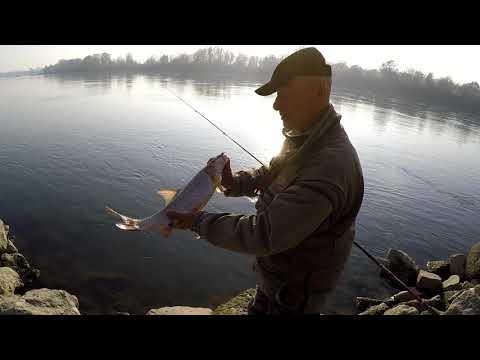 Pesca di video su un serbatoio vazuzsky