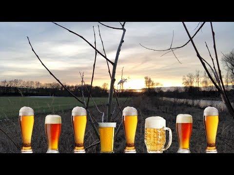 Bierwanderweg in der Bierkulturstadt Ehingen bei Ulm (4 Brauereien - 43 Biere)