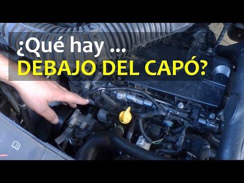Explicación rápida de las partes del coche bajo el capó