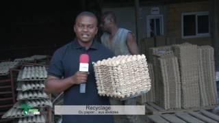 Recyclage: Du papier...aux alvéoles. (#027)
