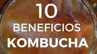 BENEFICIOS De La KOMBUCHA Y SCOBY / FERMENTADOS
