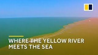 Yellow River flooding makes for a scenic merge with the Bohai Sea