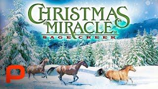 Christmas Miracle At Sage Creek (Full Movie) PG
