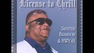 Skeeter Brandon  Highway 61 - The Sky Is Crying
