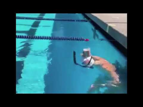 Olympic Gold Medalist Katie Ledecky Swimming with Cup of Chocolate Milk on her Head