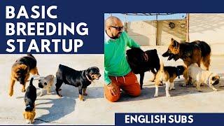 Basic Breeding Startup || Pet care ||