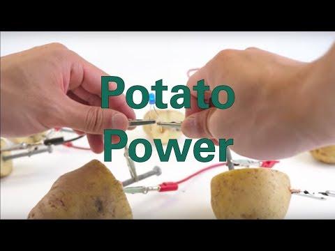 potato battery project conclusion