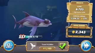 Play with smooth hammerhead video 55