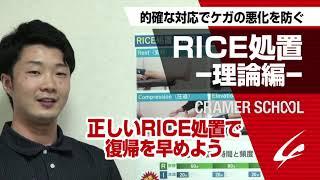 RICE処置 理論編